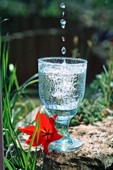 pic of a glass of water for your healthy diet plan