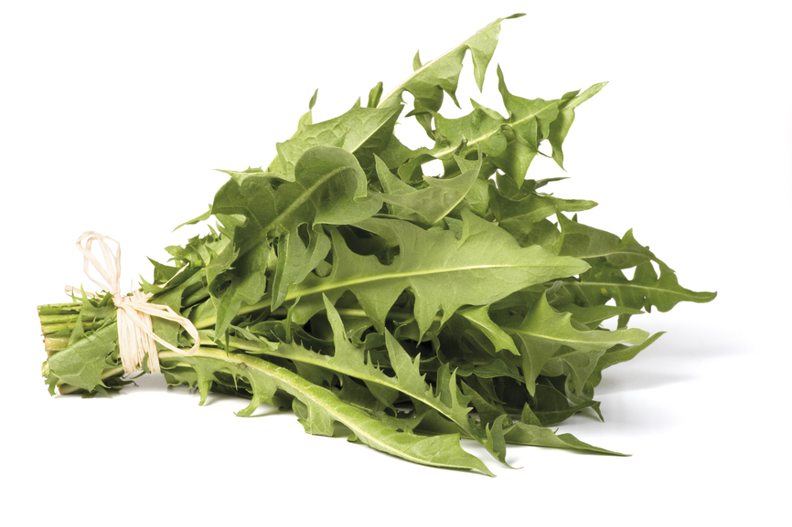a picture of dandelion so you know that a liver cleanse recipe can start with dark bitter greens