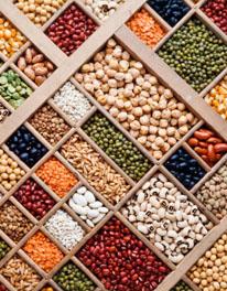 Foods high in magnesium,