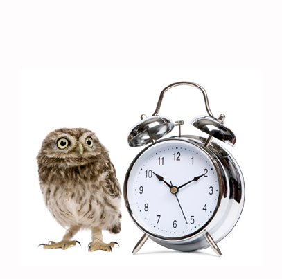 pic of an owl and clock showing the adrenal body type is a night owl